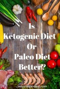 ketogenic or paleo diet better?