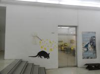 Exposición Jacinto Convit