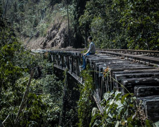 Puente lleno de musgo y matas al rededor. Foto Nohely Ron.