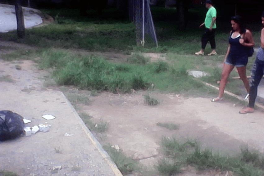 Maleza y basura sobre las caminerías originales de Burle Marx. Foto Carlos Crespo.