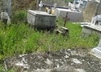 Tumbas y túmulos destruidos en el Cementerio Municipal de Tucacas. Foto ACN.