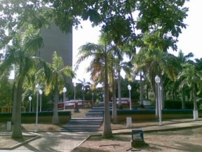 Árboles y grama integró el diseño paisajístico de la plaza Barsanti.