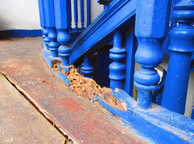 La estructura carcomida en la Casa de la Cultura Juan Félix Sánchez. Foto Franck Gavidia.