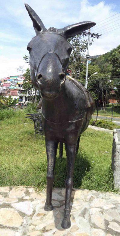 Vista frontal de la mula luego de su restauración en el 2015, mayo 2017. Foto Samuel Hurtado Camargo