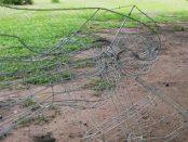 El parque Los Mangos, de Barinas, sufre de abandono de su infraestructura. Barinas, Venezuela