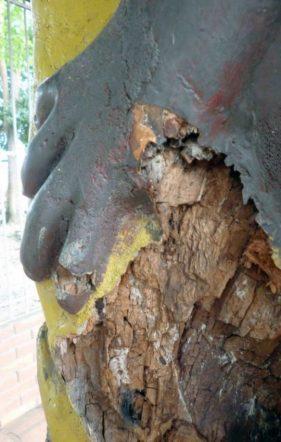 La figura que simboliza al pescado toruno en la obra El Indio, carcomida por plagas. Bien cultural del estado Barinas, Venezuela.