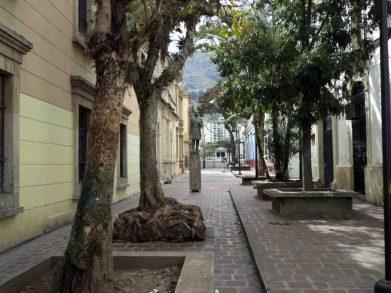 El monumento al Rector heroico Carraciolo Parra y Olmedo, en el paseo César Rengifo. Patrimonio cultural de Mérida, Venezuela.
