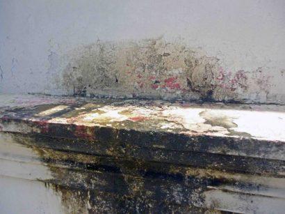La humedad ha afectado a los muros de tapia del palacio municipal de Barinas. Patrimonio histórico de Barinas en riesgo. Venezuela.