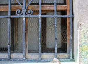 En detalles, así quedó la malla protectora de la ventana. Foto Samuel Hurtado Camargo, febrero 8 de 2019