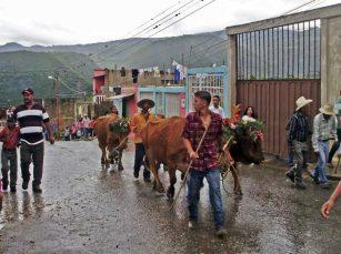 Fiesta de San Isidro en Sanare. Foto Orlando Paredes en FB Portafolio de las Tradiciones Venezolanas