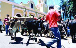 San Isidro en el municipio Santos Marquina, Mérida. Foto IPC