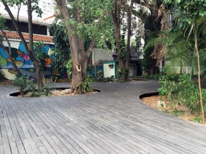 Los árboles del parque Urbano El Porvenir empiezan a sufrir las secuelas del abandono. Foto Armando Báez, abril 2019.