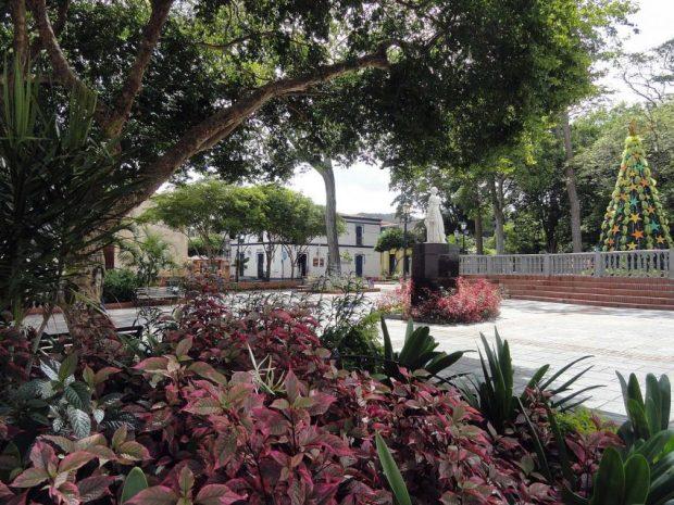 Es magnífica la arboleda de la plaza Luisa Cáceres de Arismendi. Foto José Alfaro_Wikimedia Commons, enero 3 de 2017.