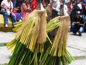 Dramatización de la danza warime, de los piaroa. Foto Cristóbal Alvarado Minic_Wikimedia Commons, abril 2011.