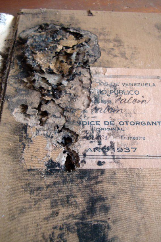 Se pierden 14 libros del archivo histórico de Paraguaná, Falcón.