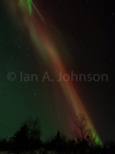The mixing of the reds and the greens was fascinating and differed from the distinctly separated watermelon aurora
