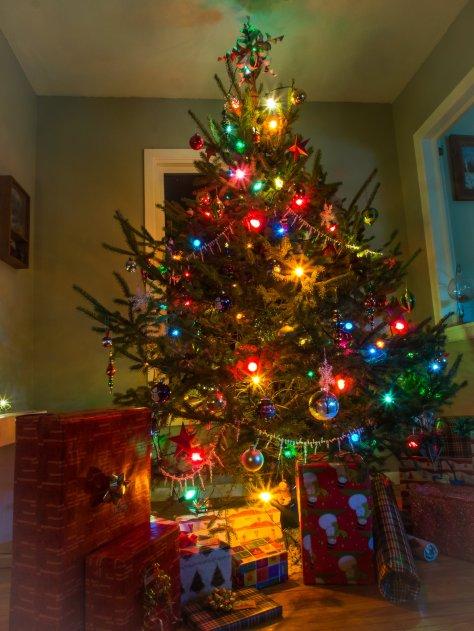The Johnson Family Christmas tree tradition.