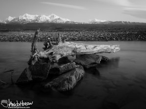 The slow-flow of the braids of Donnelly Creek, Alaska in the twilight of spring.