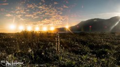 The sun does not even touch the horizon as it moves through the sky on the solstice and far above the Arctic Circle. Galbraith Lake, Brooks Range, Alaska.