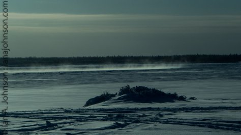 The wind out on the Yukon River looked COLD!