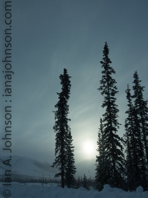 With the snow coming in the sunrise was hazy, but beatiful! This picture is taken at an unknown pull-off north of Coldfoot, AK