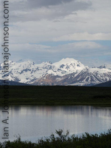 The scenery of the south side of the Alaskan Range is never ending! Snow capped mountains are reflected in the waters and cut the horizon to the north at all times.