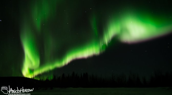 The Chena River Aurora
