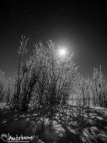 Full Moon 2 Black and White