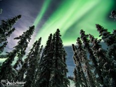 February 1st : Aurora borealis north of Fairbanks, Alaska