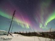 Purple Aurora - More than just red - there are some purples in the top of this aurora!