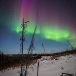 The purple of the aurora spread out across the sky.