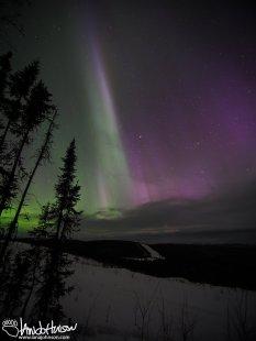A huge pillar of aurora shoots into the sky.