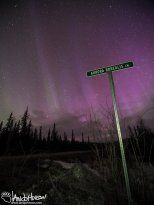 "The ""Aurora Borealis Lane"" sign is an infamous Fairbanks sign in the Goldstream Valley. Many aurora pictures have been taken over it - now I guess I have mine!"