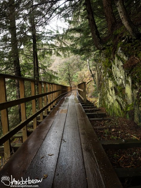 High up in the hillsides of Juneau, the Perseverance Basin boardwalk and trail offer beautiful view of Junea.