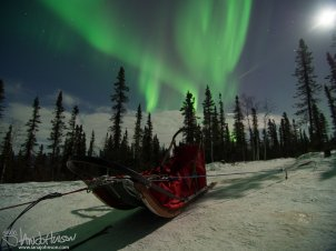 """Red Sled Aurora"""
