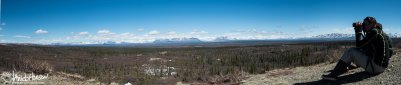 Perched up high on a hillside, we watched moose, caribou, and long-tailed jaegers from this particular position on the Denali Highway.