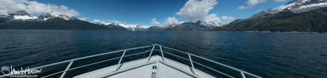 As we rounded Granite Island and moved towards to the Northwestern Glacier I captured this panorama across our bow. Brilliant blue skies!