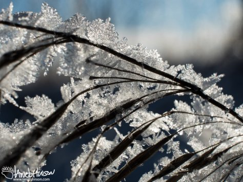 Frost on crystals