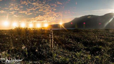 Summer Solstice on the North Slope, Galbraith Lake, Alaska