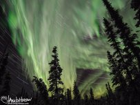 A compilation of of movment of the Northern Lights and the stars over 90 minutes in Alaska.
