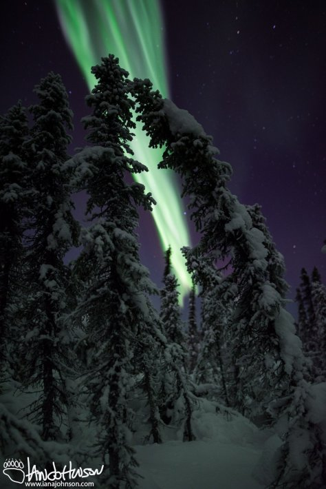 Northern Lights Archway