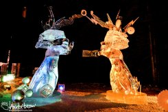 2016 World Ice Art Championship Multi-Block Contestant