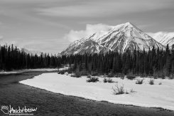 A wide open river flows through Kluane National Park - a sign of spring!