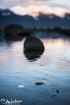 A white clam shell likes just under the surface of the water in this tide pool.