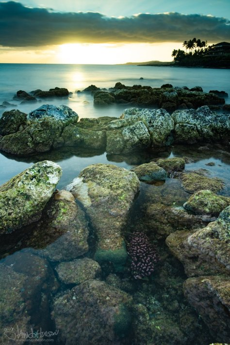 Sunset, Coral, Hawaii, rocks, lava, Kauai