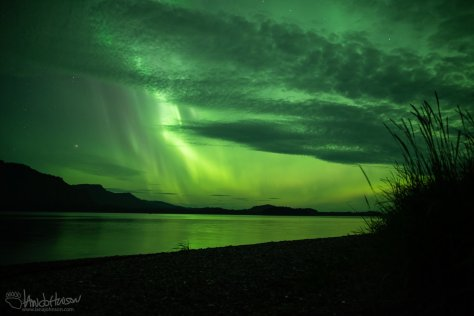 Aurora, Northern Lights, Icy Strait Point, Alaska, Hoonah, Green