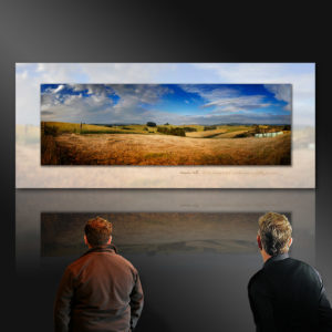 fine art gallery painting - New Zealand's Tuscany in the making Matakana Coast