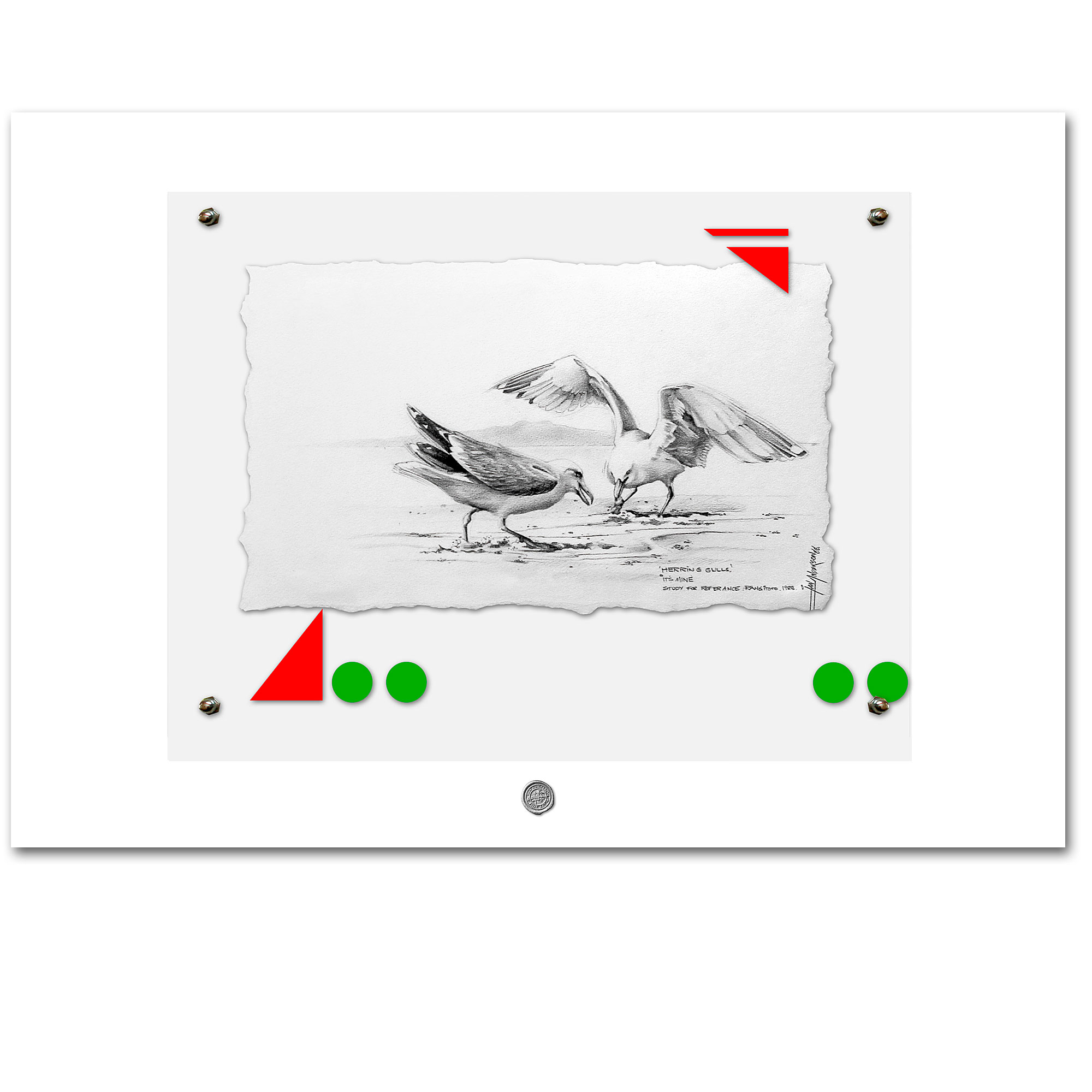 Passion and defence - A lesson from the gulls. Lead pencil illustration on archival fine art paper and mounted on gesso primed hardboard behind perspective.