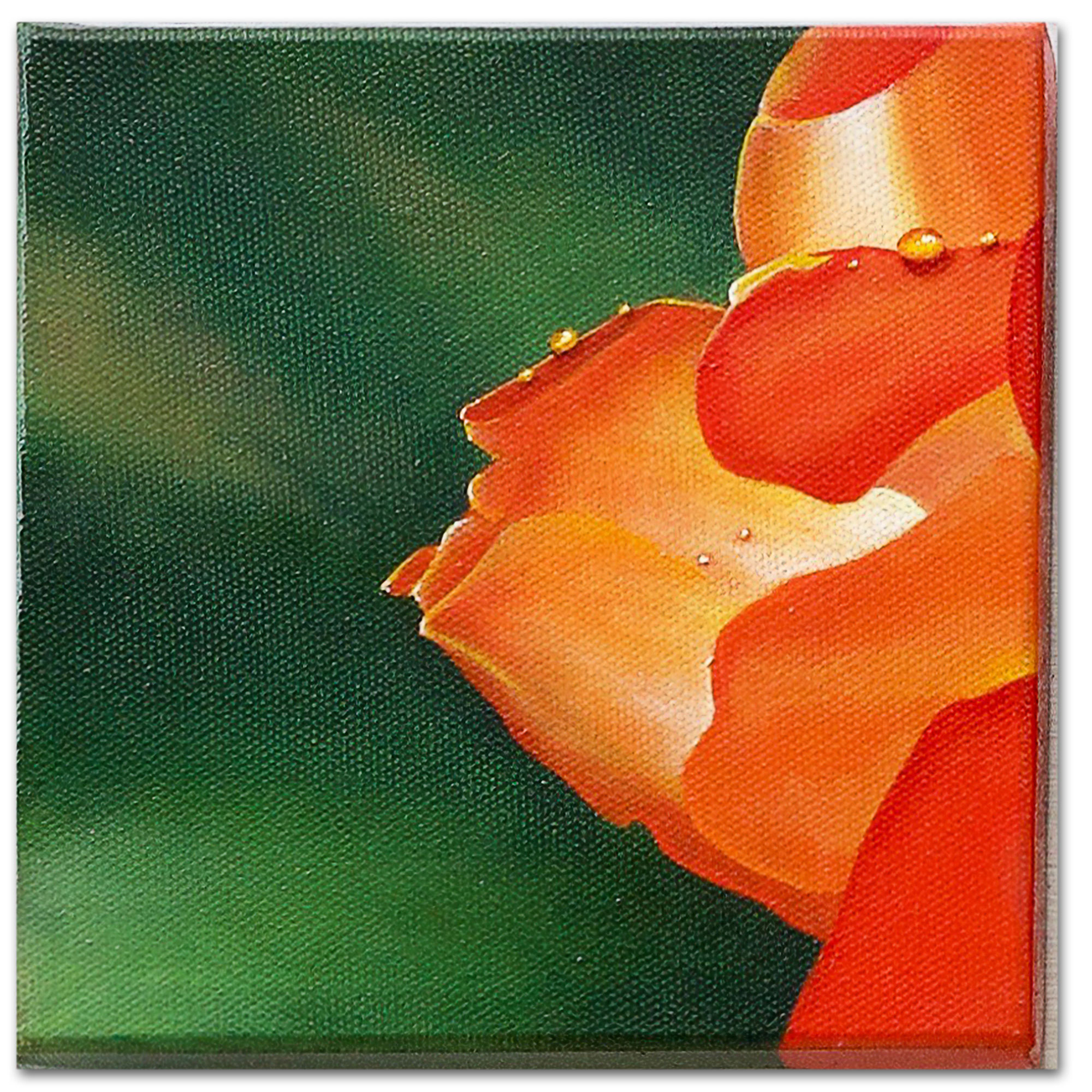 Standing proud rose oil painting - The pride of a master gardener shelters the ladybird