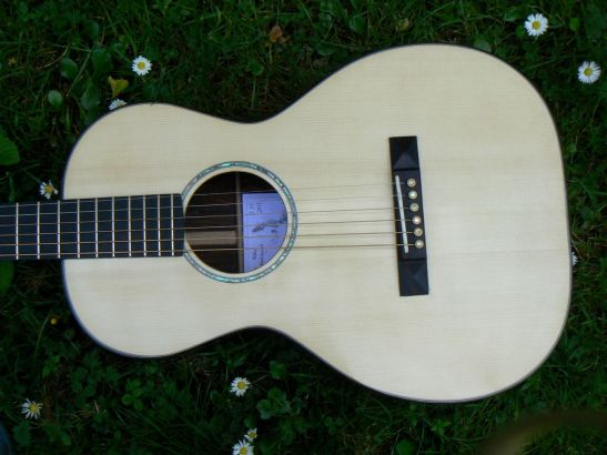 """""""O"""" style steel strung in cocobolo and englemann spruce"""